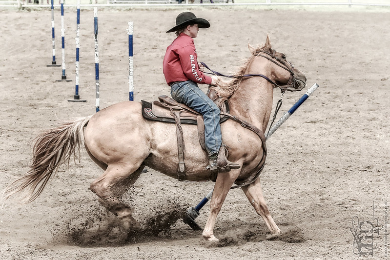 Gooseberry Lake : 4-H Rodeo 2013 : Wyatt : No Time