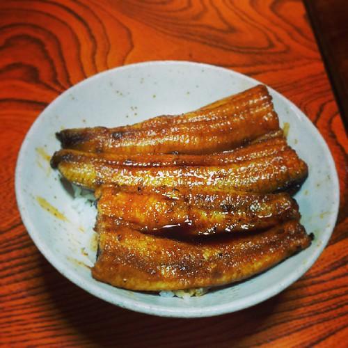 実家から再び静岡へ。 産地ならではのプリプリの鰻丼頂きました! 幸せ。