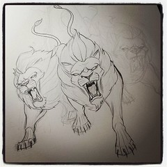 Drawing Lions For Friends Tattoo Lions Are Not Easy To Dr Flickr