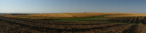 Multi-coloured fields of Bismil by CharlesFred