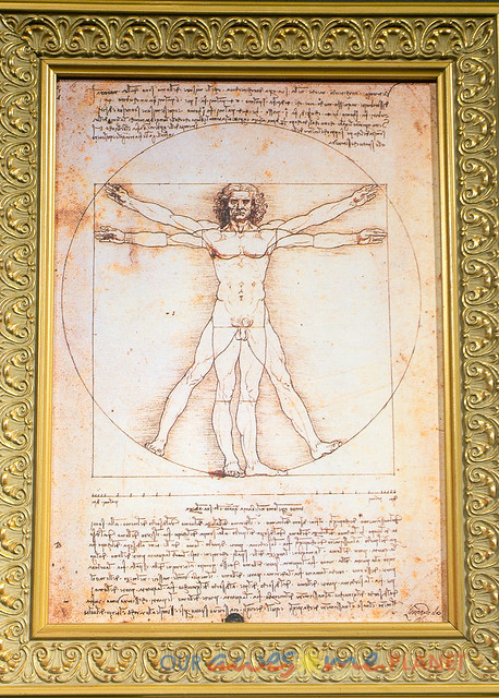 Da Vinci The Genius-10.jpg