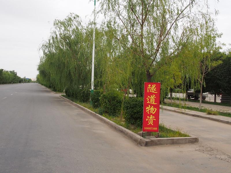QH03  dachaidan to dunhuang P8210220