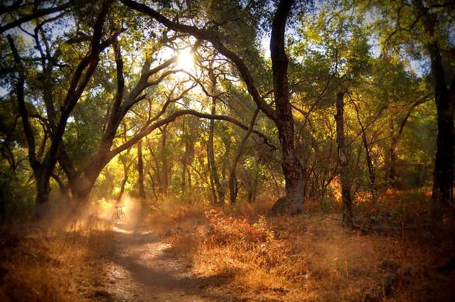 Wills Canyon Trail sunrise