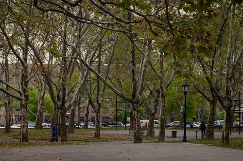 Fort Greene Park, Brooklyn by cisc1970