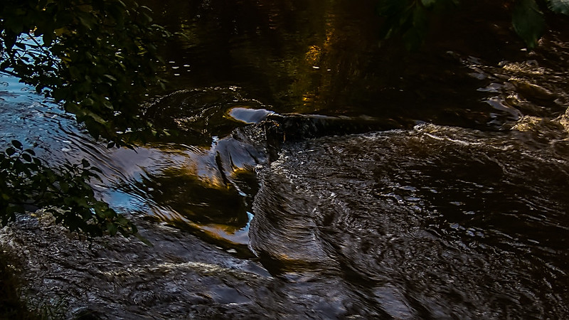 water of leith 10