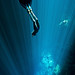 Freediving the Cenotes of the Yucatan by OneoceanOnebreath