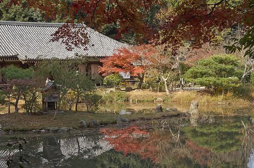 【写真】2013 紅葉 : 浄瑠璃寺/2019-08-22/IMGP3559