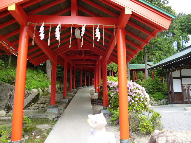 Photo:Mienshao in Otsu, Shiga 14 (Oumi Jingu Shrine) By Kasadera