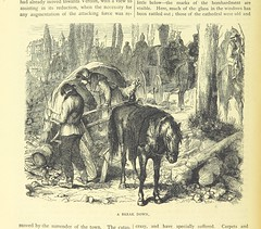 """British Library digitised image from page 510 of """"Cassell's Illustrated History of the War between France and Germany, 1870-1871"""""""