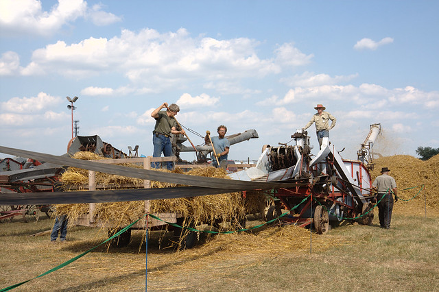 Threshing Definition Meaning