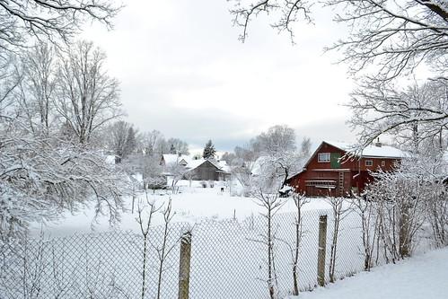 winter snow landscapes branches nieve latvia invierno letonia skriveri nikond3100 flickr12days