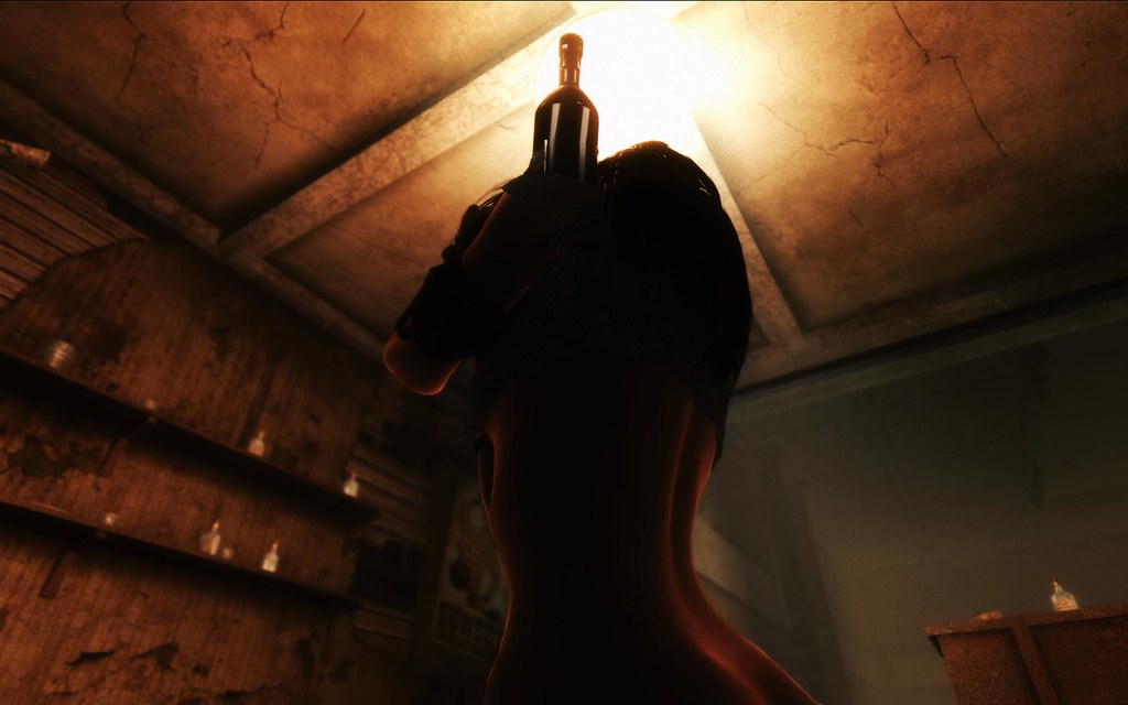 Fallout Screenshots XIII - Page 43 11443547305_970520453a_b