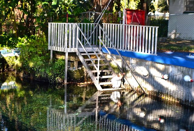 natural spring pool of kings bay inn crystal river