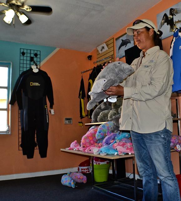 Manatee Snorkeling, Crystal River, Florida - teaching about Manatee