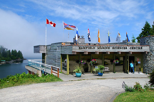 Bamfield Marine Sciences Centre, Bamfield, Vancouver Island, British Columbia