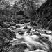 Buachaille Etive Mòr in Winter - Explored 15/01/14 by mark_mullen