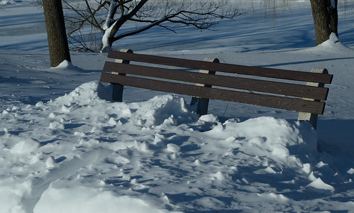 Frozen park bench
