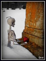 love (never dies)