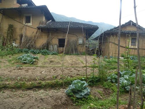 Fujian-Tulous-Hakkas-Tour-Taxia (11)