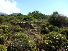 Murets divers du hameau ruiné de Pastricciola