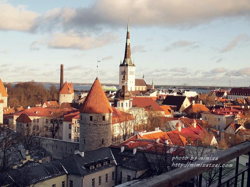 愛沙尼亞 塔林 旅遊 (1)