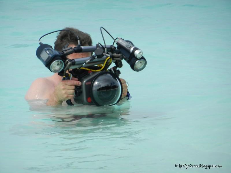 Так фотографируют рыб