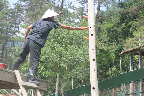 A bear worker is setting up enclosure for bears at VBRC, 2014
