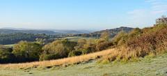 HolderThe Surrey Hills