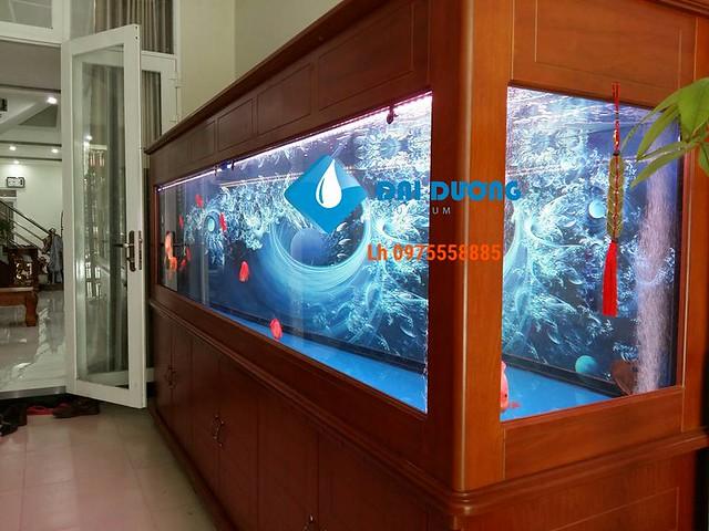 hồ cá rồng dài 3,2m