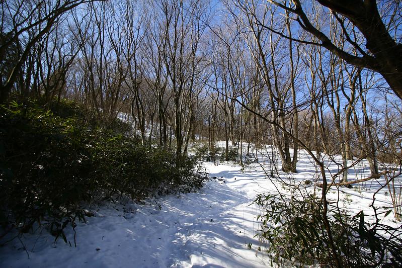 20150214-明神ヶ岳-0116.jpg