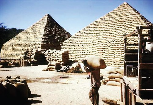 paticheri_groundnutpyramids (2)