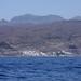 Paseo Marítimo por La Costa de Mogán en Gran Canaria (Agosto de 2013)
