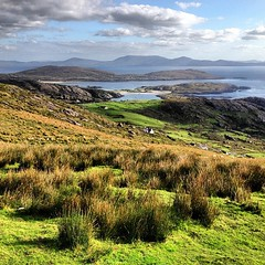 Ring of Kerry, Southeast. Basking in sun and green (aided by earlier rains). Rolling, lyrical, open. #dna2ireland