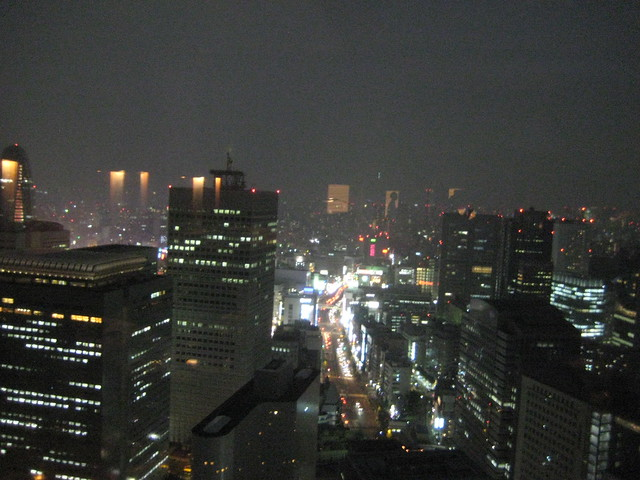 Japan Last Days: Tokyo