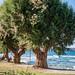 Stalos Beach Villas