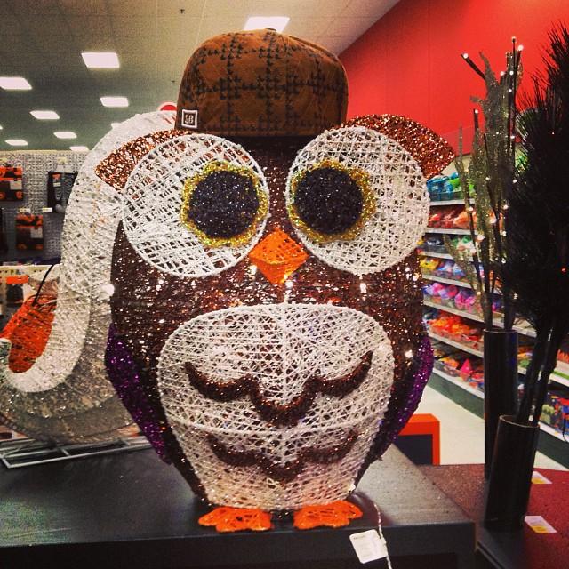 Halloween Medium Owl Flattie Dog Toy