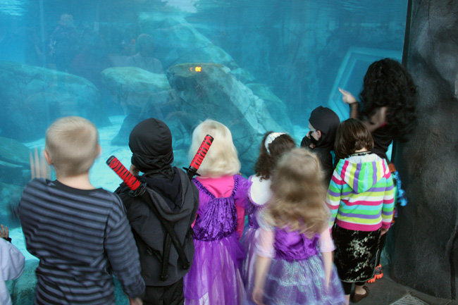 Kids-by-aquarium