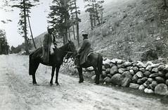 Kosakker? (1935)
