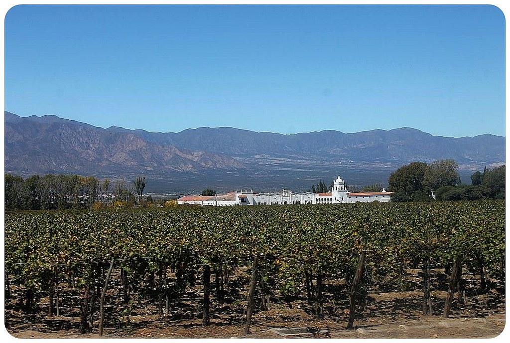29 argentina quebrada da cafayate vinyard