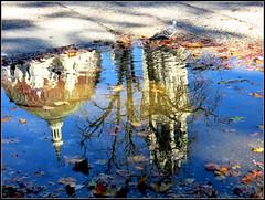 Una mañana de otoño en El Retiro