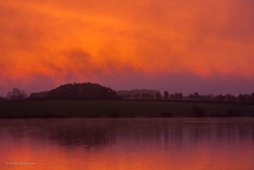 trees england mist painterly reflection misty fog sunrise miltonkeynes unitedkingdom reflect ripples lightandshade furzton furztonlake bandsofcolour