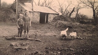 Hannie visits The  Mulcahy family in Rathwood Abington co. Limerick Ireland, 1947