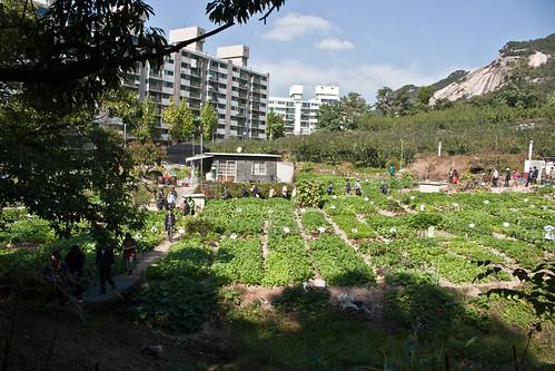 서울도시농업 비전투어(10/18)