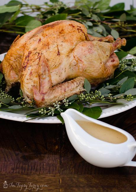 brown-bag-turkey