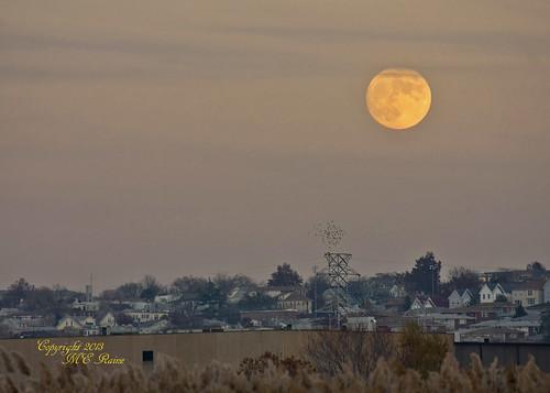 "autumn moon fall nature creek twilight dusk meadowlands marsh"" ""full moon"" ""mill nj"" ""secaucus"