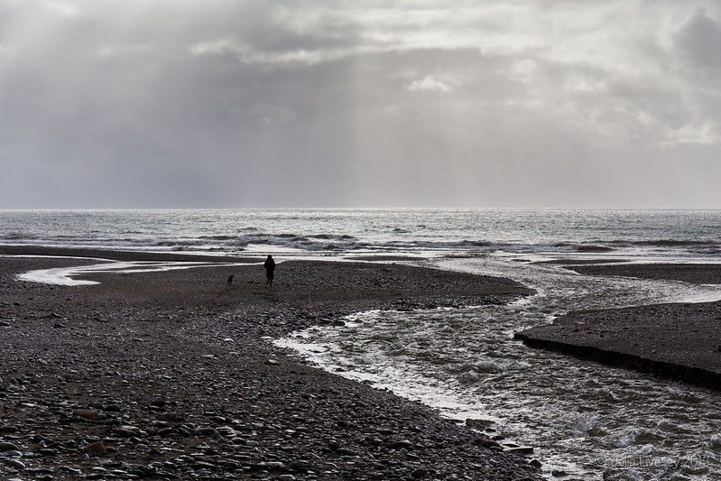 A bleak scene on Seaton beach