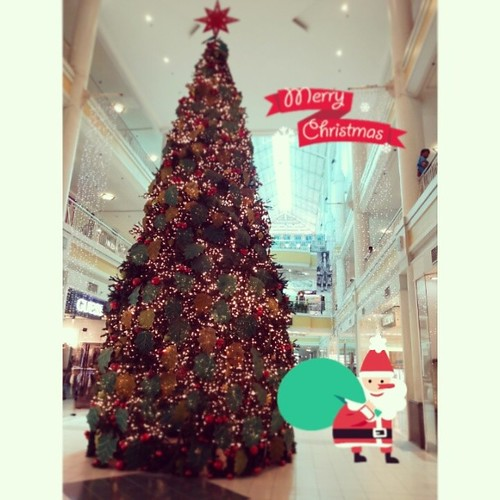 A sure sign that the holidays are fast approaching. The #christmas tree at Ayala Center Cebu is already up! #yuletide #igerscebu #ayala