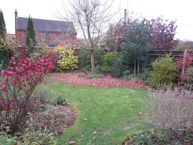November garden (4)