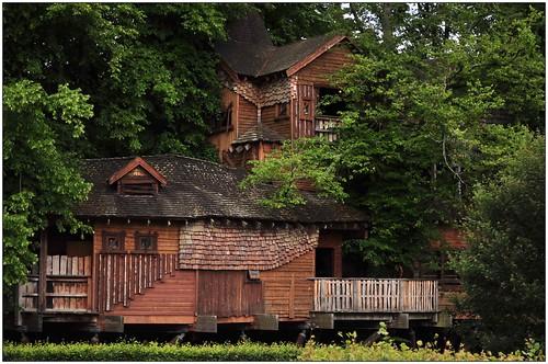 sco_treehouse