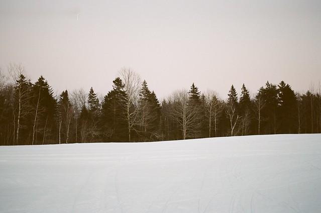 Libby Field.